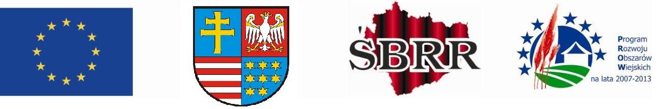- logo_sbrr.jpg